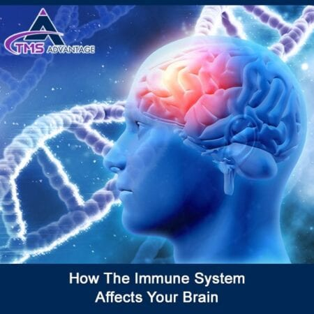 How The Immune System Affects Your Brain