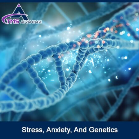 Stress, Anxiety, And Genetics